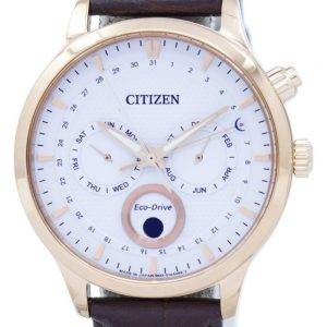 Citizen Eco-Drive Moon Phase Japan Made AP1052-00A Men's Watch