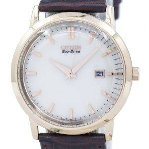 Citizen Eco-Drive BM7193-07B Men's Watch