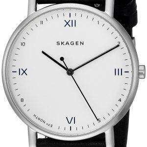 Skagen x Playtype Signatur Quartz SKW6412 Men's Watch